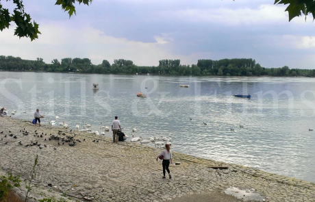 Final4 Belgrade - filming at the river Sava
